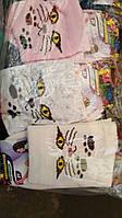 Носки детские Китти, фото 1