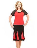 Женский  костюм  Нита    больших размеров 50