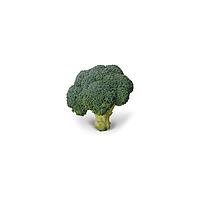 KS 355 F1 семена капусты брокколи (Kitano Seeds, Япония)