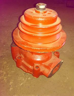 Водяной насос Д-442 (Алтаец) (10-13с3-2А), фото 2