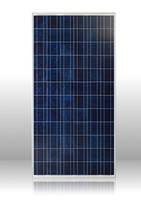 Солнечная батарея Perlight 300Вт / 24В (поликристаллическая)  PLM-300P-72