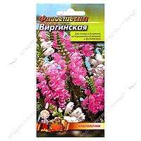 Семена физостегия евро пакет Виргинская 50 семян