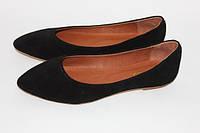 Женские балетки с заостренным носком, натуральный замш, фото 1