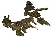 Аконит Джунгарский корень 50 грамм, Алтай