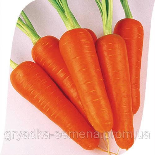 Морковь Абако F1/ Abaco F1 Seminis 1 млн семян ( ǿ 1,4-1,6)