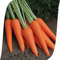 Морковь Абликсо F1/ Ablixo F1 Seminis 200 000 семян , фото 1