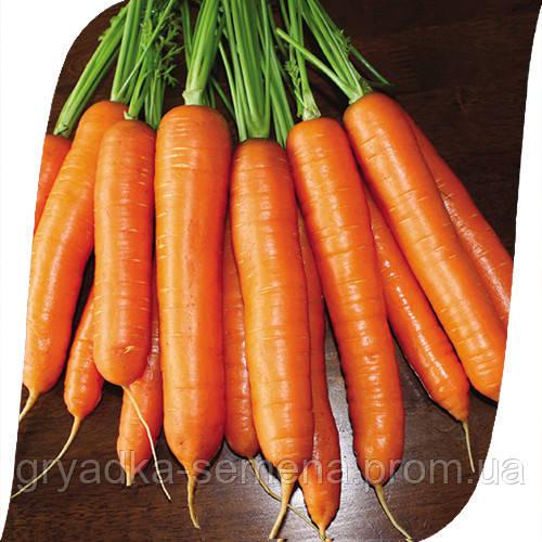 Морковь Карболи F1 Seminis 200 000 семян