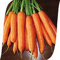 Морковь Карболи F1 Seminis 200 000 семян , фото 1