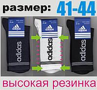 """Носки мужские демисезонные """"Adidas"""" высокая резинка 41-44р. НМД-243"""