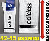 """Носки мужские демисезонные """"Adidas"""" высокая резинка белые  42-45р. НМД-05245"""