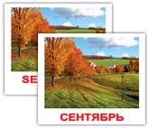 «Времена года/Seasons» МИНИ 40 Карточки Домана