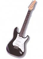 Электро-гитара Apollo DST 100
