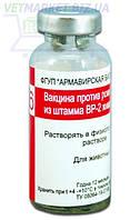 Вакцина против рожи свиней из штамма ВР-2, 10 мл - 20 доз, Армавирская биофабрика