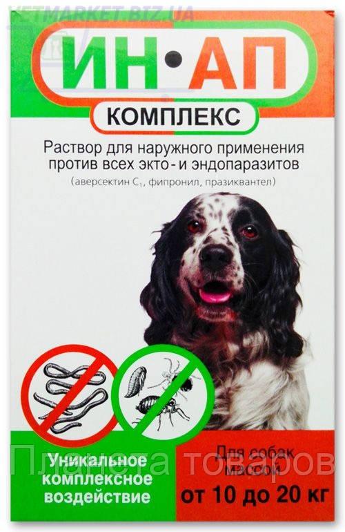 ИН-АП комплекс капли для собак от 10 до 20 кг, 2 мл, Астрафарм - Планета товаров в Харькове