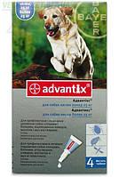 Advantix (Адвантикс) капли от блох и клещей для собак от 25 до 40 кг, 1 тюб. по 4 мл Bayer (Байер)