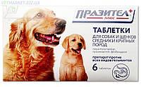 Празител плюс для собак и щенков средних и крупных пород, упаковка 6 таблеток