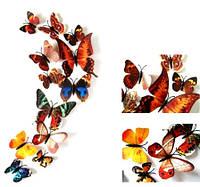 Бабочки 3D цветные (коричневые) 3Д декор наклейки магнит