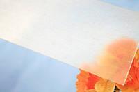 Шифер в рулоне плоский  бесцветный прозрачный