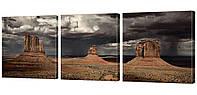 Модульная картина 199 буря над прерией