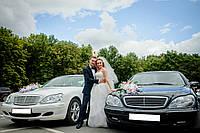 Аренда прокат Vip авто лимузина на свадьбу Харьков