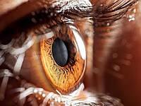 Новая терапия спасёт людей от слепоты.
