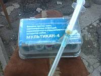 Вакцинация (прививки) животным (093)408-09-36