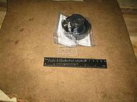 Крышка бака топливного ВАЗ 2101 с ключом (ДААЗ). 0-94000000