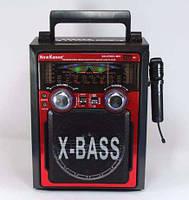 Радиоприемник колонка акустическая KN-61-REC-R USB/МР3, акустическая система KN-61-REC-R, музыкальна колонка