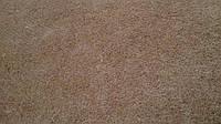 Кокосовая койра в листах 2 см 200*80 натуральный материал