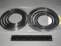 Ремкомплект гидроцилиндра подъема кузова а/м ГАЗ САЗ-3307, 3507 (5465). 3307-8600001