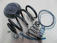 Ремкомплект энергоаккумулятора тип 24 (г.Рославль). 100.3519209