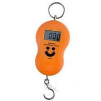 Весы ACS 168 Кантер 50kg