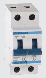 Автоматический выключатель автомат 6 А ампер двухфазный двухполюсный С C характеристика цена купить Европа