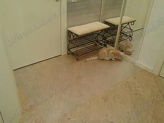 Установка защитного прозрачного ковра в помещении 15