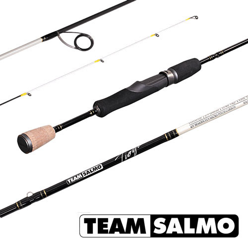 Спиннинг Team Salmo TIOGA 1-8g 6.5ft