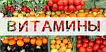 Страничка валеолога за март 2016 г. Роль витаминов в жизни человека. Часть 1