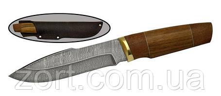 Нож с фиксированным клинком Койот, фото 2