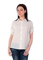 Блуза шифон прямая D5, фото 1