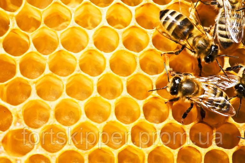 Машины и механизмы для пчеловодства Swienty