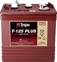 Аккумуляторная батарея TROJAN T125+