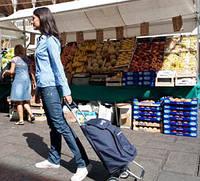 Хозяйственные сумки-тележки для хозяйственных дам