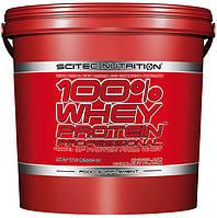 100% Whey Protein Professional Scitec Nutrition, 5000 грамм