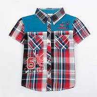 Футболки, майки, рубашки для мальчика