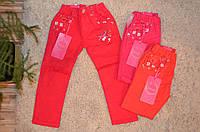 Котоновые брюки для девочек оптом 98-128 см