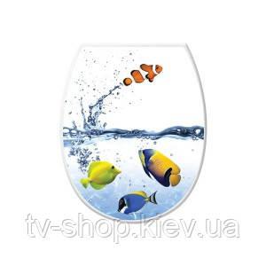 Сидение для унитаза Рыбки Elif