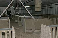Оборудование для свиноводства и КРС