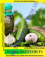Семена огурца Закусон F1 5 кг (мешок)