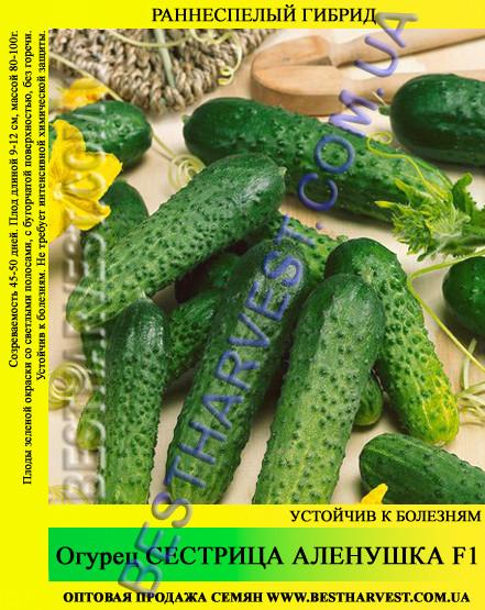 Семена огурца Сестрица Аленушка F1 5 кг (мешок)