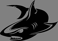 Виниловая наклейка Акула 2