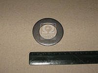 Шайба 35х60х6 (КамАЗ). 862500